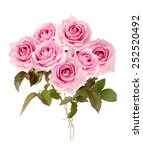 pink roses bunch isolated on... | Shutterstock . vector #252520492