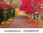 way to chureito pagoda in... | Shutterstock . vector #252600535