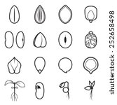 seed icon set  which represents ... | Shutterstock .eps vector #252658498