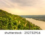 View Over Vineyards  Boppard ...