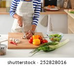 young woman cutting vegetables... | Shutterstock . vector #252828016