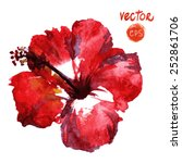 watercolor vector red hibiscus. ...