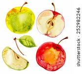 apples painted with watercolors ... | Shutterstock .eps vector #252982246