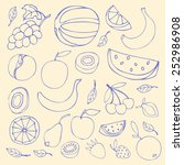 set sketches of fruit  isolated ... | Shutterstock .eps vector #252986908