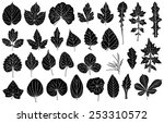 set of different leaves... | Shutterstock .eps vector #253310572