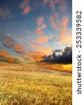wheat field under a scenic sky... | Shutterstock . vector #253339582