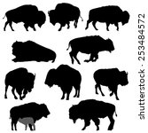 Set Of American Bison...