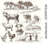 Farm Animals   Hand Drawn...