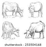vietnamese cow | Shutterstock .eps vector #253504168