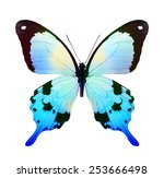Color Tropical Butterfly  ...