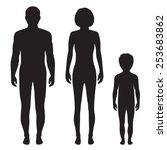 human body anatomy front vector ... | Shutterstock .eps vector #253683862