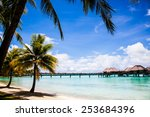 bora bora beach with palms and...   Shutterstock . vector #253684396