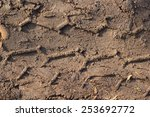 Motorcycle Tire Tracks On Soil...