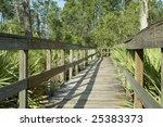 boardwalk in florida | Shutterstock . vector #25383373
