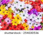 Colorful Flowers Abstract...