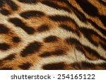 Ocelot Fur Details