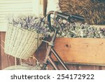 Vintage Bicycle With Flower  ...