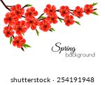 Spring Background With Blossom...