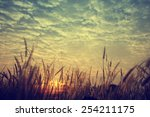 vintage nature background | Shutterstock . vector #254211175
