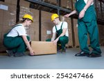two young workers lifting heavy ... | Shutterstock . vector #254247466