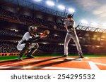 professional baseball players... | Shutterstock . vector #254295532