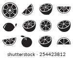 collection of citrus slices  ... | Shutterstock .eps vector #254423812