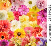 Stock photo digital painting of colorful floral background 254544292