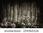 Piece Of Wooden Wall In The...