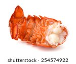 Lobster Tail Isolated
