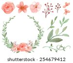 set of flowers and leaves... | Shutterstock .eps vector #254679412