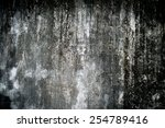 the abstract background from... | Shutterstock . vector #254789416