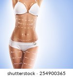 female body with the drawing... | Shutterstock . vector #254900365