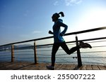 healthy lifestyle sports woman... | Shutterstock . vector #255007222