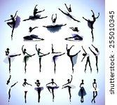 set of female silhouettes of... | Shutterstock .eps vector #255010345