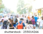 crowd of anonymous people... | Shutterstock . vector #255014266