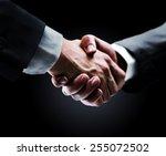handshake   hand holding on... | Shutterstock . vector #255072502