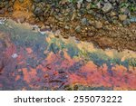 polluted water coming out of a... | Shutterstock . vector #255073222