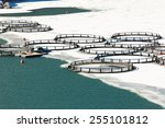 Fish farm in frozen lake ...