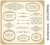 set of vintage vector ornaments ... | Shutterstock .eps vector #255139846