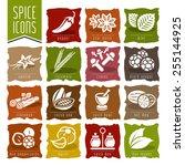 spice icon set   2 | Shutterstock .eps vector #255144925
