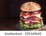 double decker cheeseburger with ... | Shutterstock . vector #255169642