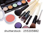 makeup brush and cosmetics  on... | Shutterstock . vector #255205882
