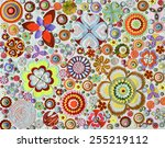 abstract imaginary flower... | Shutterstock . vector #255219112