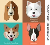 set of flat dogs faces icons.... | Shutterstock .eps vector #255220402