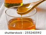 agave syrup pouring on a glass. ... | Shutterstock . vector #255240592