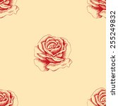 sketch red rose seamless... | Shutterstock . vector #255249832
