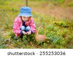 adorable girl picking... | Shutterstock . vector #255253036