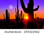 Third Sunset At Saguaro...