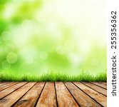 fresh spring green grass with... | Shutterstock . vector #255356362