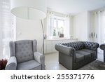 a comfortable armchair in a... | Shutterstock . vector #255371776